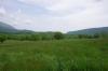 奥の牧草地