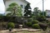 庭(母屋玄関側)