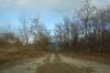 北側入口農道